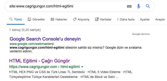 sayfam google da var mı